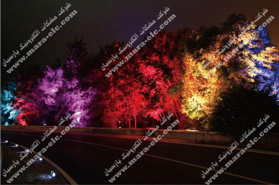 نور پردازی درخت با استفاده از پرژکتور های تک رنگ و تمام رنگ